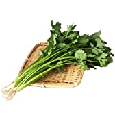 国産サラダ野菜 新鮮パクチー(香菜)業務用 4kg(200g×20袋)