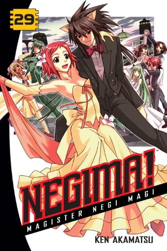 Negima! 29: Magister Negi Magi (Negima!: Magister Negi Magi)