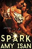 Spark (Ruin Outlaws MC Romance #2)