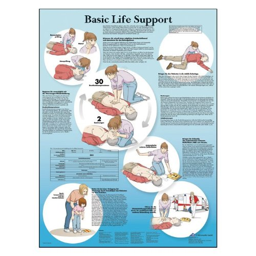 3B Scientific Glossy Paper Basic Life Support Anatomical Chart - 1