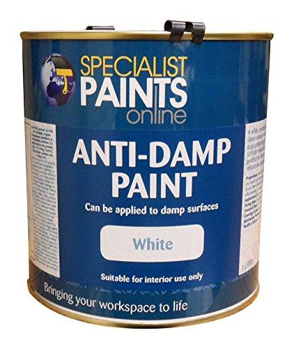 specialist-paints-online-anti-damp-paint-1-litre