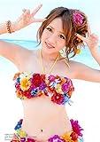 AKB48 公式生写真 さよならクロール 通常盤 封入特典 【高橋みなみ】 水着