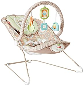Fisher-Price Comfy Time Bouncer (Discontinued by Manufacturer)
