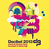 Decibel 2013