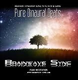 Pure Binaural Beats - Alpha, Theta, Gamma and Delta Brainwave Entrainment - Music for Meditation