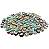 TheBeadsFactory 100pc Lot [PREMIUM HIGH QUALITY] Silver Lampwork Murano Glass European Mix Beads with SINGLE CORE - Compatible with Pandora, Chamilia, Troll, Biagi
