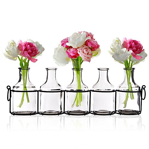 Set of 5 Clear Glass Mini Vases in Black Metal Rack, 5-Inches, Decorative Centerpiece for Flower Arrangements 0