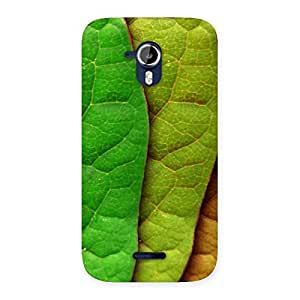 Stylish Pattern Leaf Back Case Cover for Micromax Canvas Magnus A117