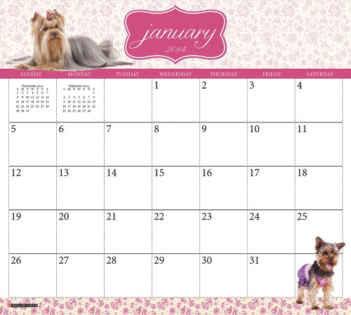 Yorkies Magnetic Calendar 2014