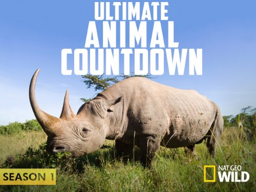 Ultimate Animal Countdown Season 1