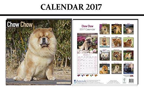 chow-chow-dogs-calendario-2017