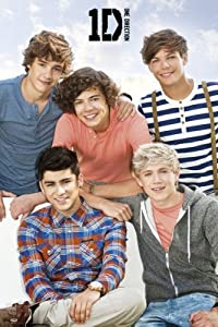 24x36 One Direction Bench Music Poster from Poster Revolution