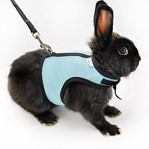 Niteangel-Soft-Harness-with-Lead-for-Rabbits