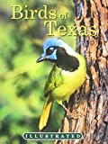 img - for The Illustrated Birds of Texas book / textbook / text book