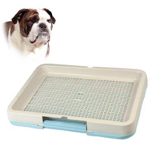 Artikelbild: Hundetoilette24 H684 Hundetoilette in Hellblau - Größe: L (L63cm x B47cm)
