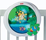 Fisher-Price Rainforest Peek-a-Boo Soother, Waterfall Baby, NewBorn, Children, Kid, Infant