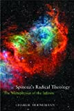 Spinoza's Radical Theology: Metaphysics of Infinite