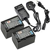 DSTE® 2pcs NP-FV70 Rechargeable Li-ion Battery + Charger DC04U for Sony DCR-SR15, SR21, SR68, SR88, SX15, SX21, SX44, SX45, SX63, SX65, SX83, SX85, FDR-AX100, HDR-CX105, CX110, CX115, CX130, CX150, CX155, CX160, CX190, CX200, CX210, CX220, CX230, CX260V,