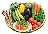 奈良県産 高原の朝露セット(大和の伝統野菜とこだわり野菜のセット)トマト ナス キュウリ ピーマン サラダ水菜 スイートコーン じゃがいも 玉ねぎ ひもとうがらし 青大豆きな粉
