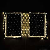 """Connectable Christmas LED Net Light with 176 Leds 40""""x80"""" 120 Volt Warm White Green Wire,by LEDwholesalers 2083ww"""
