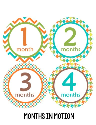 Months in Motion 117 Monthly Baby Stickers Baby Boy Milestone Age Sticker Photo