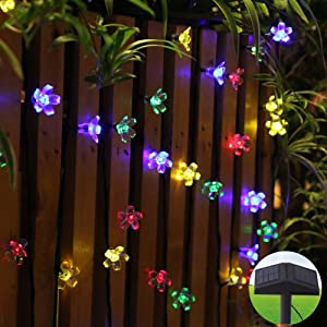 Solar String Lights In Backyard : Amazon.com : Innoo Tech 80 Led RGB Solar Outdoor String Lights with Twinkle Mode, Led Fairy ...