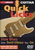 echange, troc Guitar Quick Licks: David Gilmour Style Slow Blues [Import anglais]