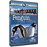 NATURE - Penguin Post Office