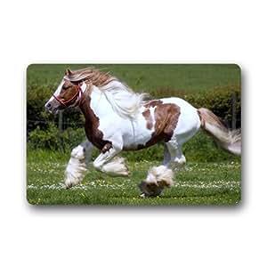 Amazon.com - Shayrskaya Horse Custom Outdoor Indoor
