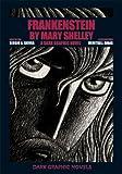 Frankenstein by Mary Shelley: A Dark Graphic Novel (Dark Graphic Novels)