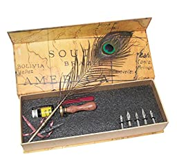 Vintage Natural Peacock Feather Copper Stem Nibbed Writing Quill Dip Pen Sealing Wax Seal Set