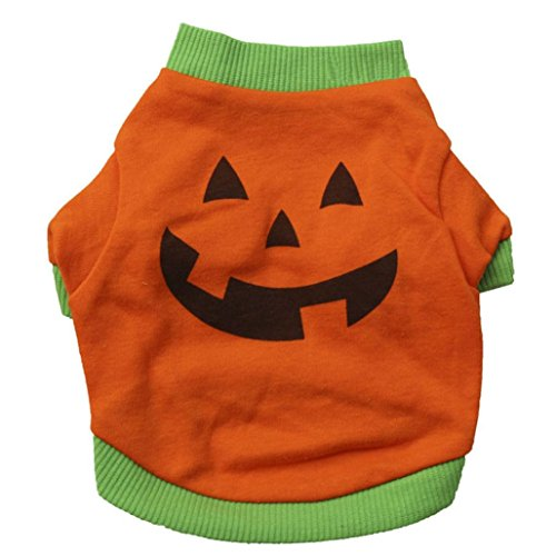 Puppy Clothes,Neartime Halloween Pet Outfit Dog Shirt Tops Cute Pumpkin Costumes (S) (Pumpkin Outfit For Dogs)