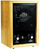 Alpine Living New Air Purifier Ionizer Ozone Air Cleaner by ProSource 3000 Sq Feet Oak Wood