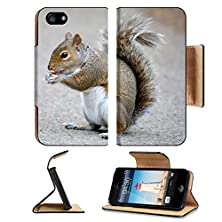 buy Apple Iphone 5 Iphone 5S Flip Case Brown Squirrel Eating Nuts In A Park Image 34260477 By Msd Customized Premium Deluxe Pu Leather Generation Accessories Hd Wifi Luxury Protector