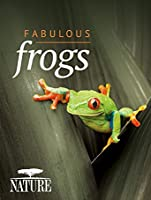 Nature: Fabulous Frogs [HD]