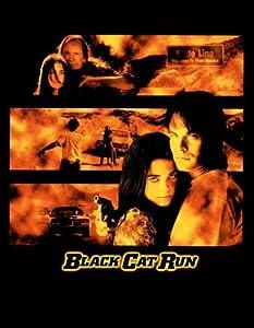 Cat run 2 movie poster