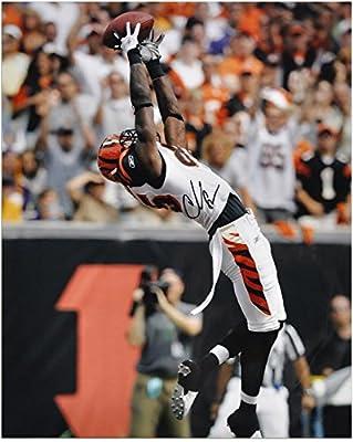 "Chad Johnson Cincinnati Bengals Autographed 16"" x 20"" Backwards Catch Photograph - Fanatics Authentic Certified"