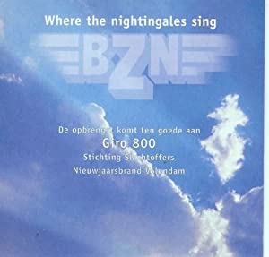 Where the nightingales sing / TV Medley (Single-CD, Cardsleeve, 2 tracks)