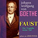 Faust. Der Tragödie erster Teil Audiobook by Johann Wolfgang von Goethe Narrated by Jürgen Fritsche