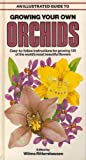 An Illustrated Guide to Growing Your Own Orchids