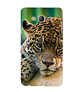 Leopard resting 3D Hard Polycarbonate Designer Back Case Cover for Samsung Galaxy On5 :: Samsung Galaxy On 5 Pro