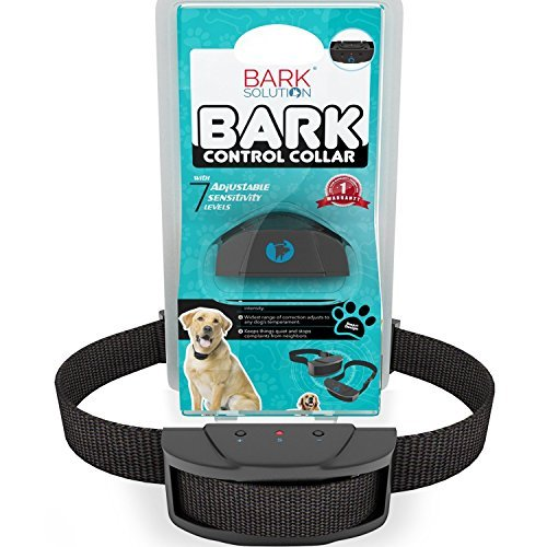 Top 5 Best Anti Bark Collar For Sale 2016 Product Boomsbeat