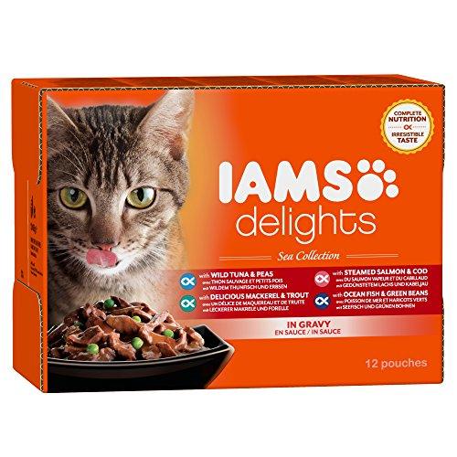 iams-delights-sea-collection-nassfutter-fur-erwachsene-katzen-mit-verschiedenen-fisch-sorten-in-sauc