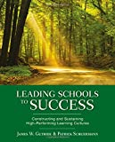 img - for Leading Schools to Success: Constructing and Sustaining High-Performing Learning Cultures book / textbook / text book