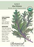 Red Winter Kale Certified Organic Heirloom Seeds