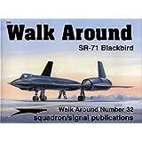 SR-71 Blackbird (Walk Around No. 32)