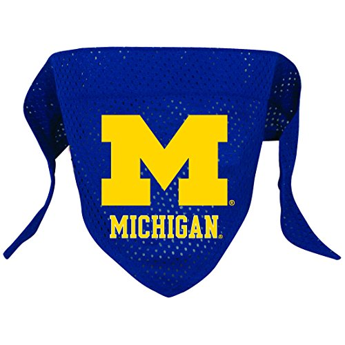 Ncaa Michigan Wolverines Pet Bandana, Team Color, Small front-969196