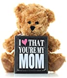 Mom Gifts From Daughter or Son for Christmas Birthday Thank You Gift - Teddy Bear and Mom Plaque Best Gifts for Mother in Law