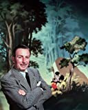 Photo Color Mickey Mouse & Walt Disney image 4