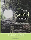 The Sacred Valley: A guide for growing leaders with a deep, bold, consequential faith in Jesus Christ